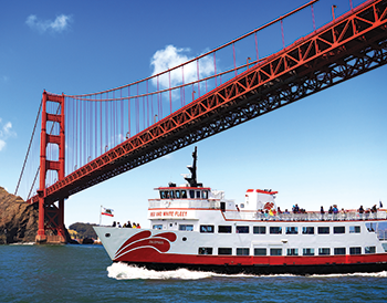 Red&White Fleet vessel under the GGB